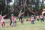 taro rangers camp 2