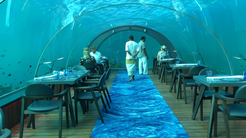 maldives 5.8 restaurant